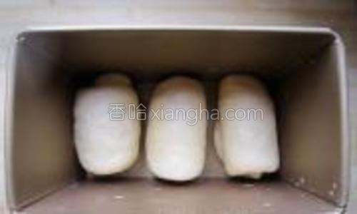 放入吐司模中,进行二次发酵。