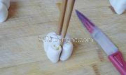 断面向上,用筷子拦腰夹一下。
