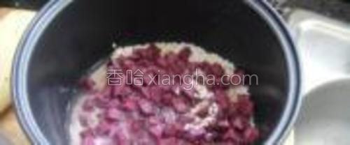 将紫薯切丁,与泡好的大米玉米糁放入电饭煲开始蒸,水比平时稍少一点即可。蒸熟后电饭煲自行保温。
