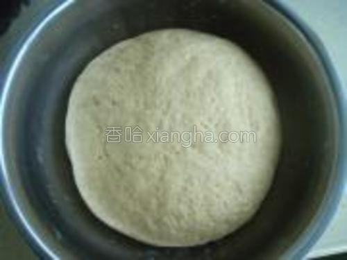 盖上保鲜膜,在温暖入发酵至原来的1.5倍到2倍大就可以了。