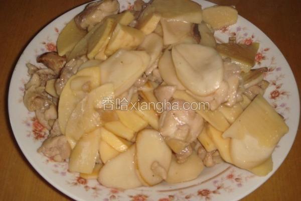 杏鲍菇炒鸡片