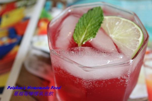 蔓越莓柠檬气泡饮的做法