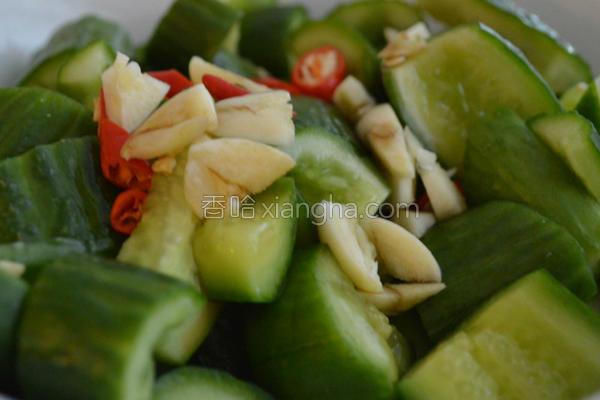 凉拌小黄瓜的做法