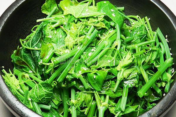 凉拌龙鬚菜的做法