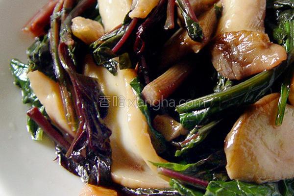 蒜炒青葙杏鲍菇的做法