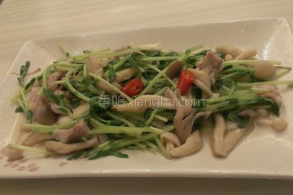 豌豆苗炒菇菇的做法
