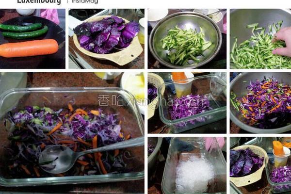 凉拌紫高丽菜的做法