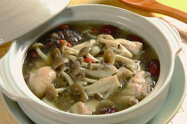 海鲜菇菇鸡汤的做法