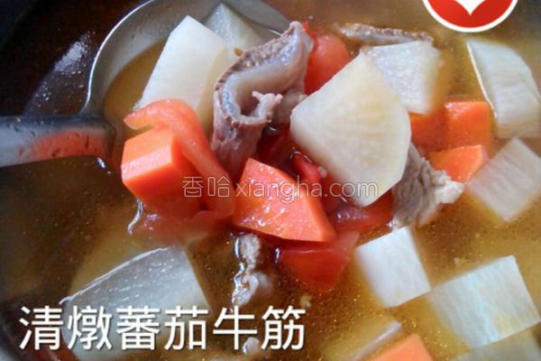 清炖番茄牛筋的做法