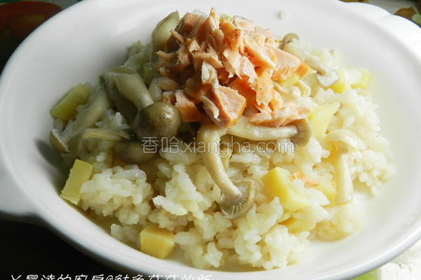 鲑鱼菇菇炊饭的做法