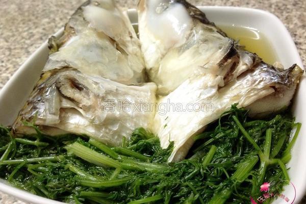 茴香乌鱼汤的做法
