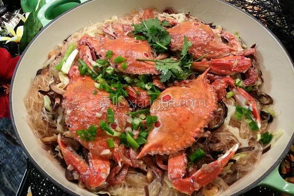 螃蟹粉丝煲的做法