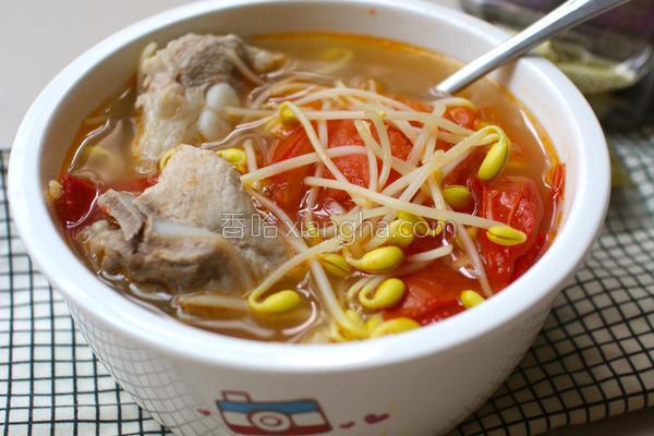 番茄黄豆芽排骨汤的做法