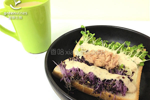 芽菜鲔鱼沙拉土司的做法
