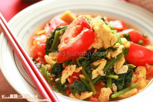 菠菜番茄炒蛋的做法