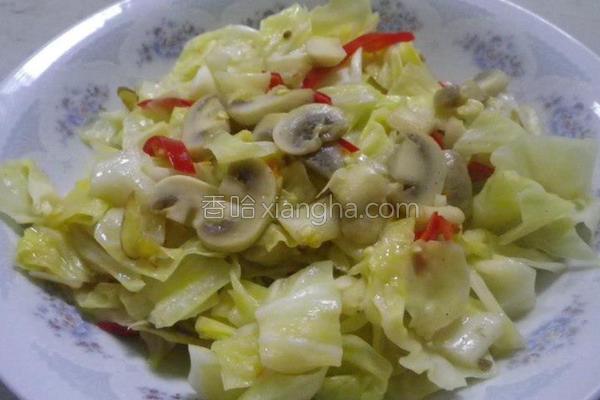 蘑菇高丽菜的做法