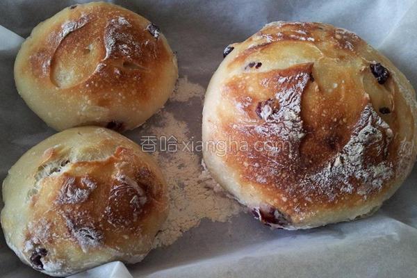 免揉欧式面包的做法