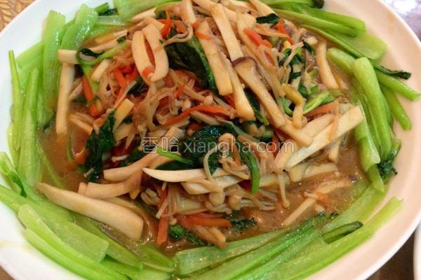 素蚝油烩双菇的做法