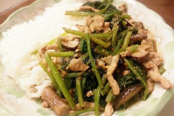 沙茶肉丝烩饭的做法