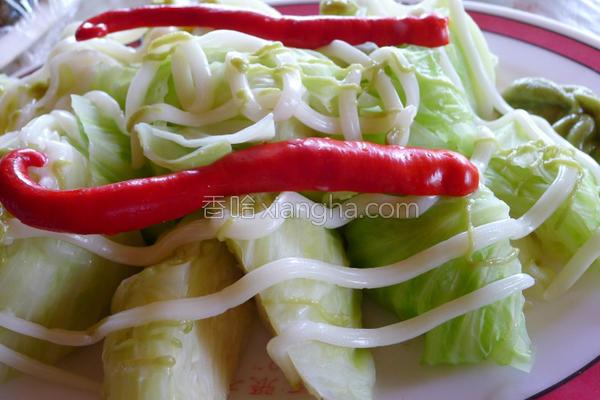 机高丽菜沙拉的做法