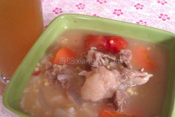 清炖牛肉小米白粥的做法
