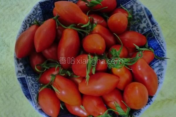 超甜玉女小番茄的做法