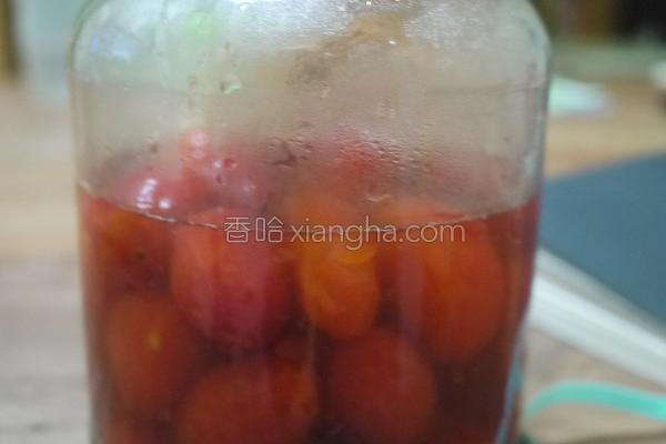 冰酿番茄的做法