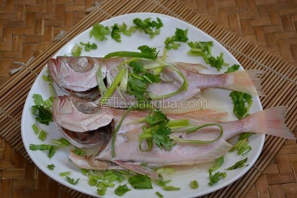 鲜蒸红目鲢鱼的做法