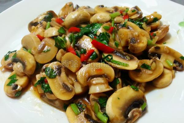 塔香蘑菇的做法