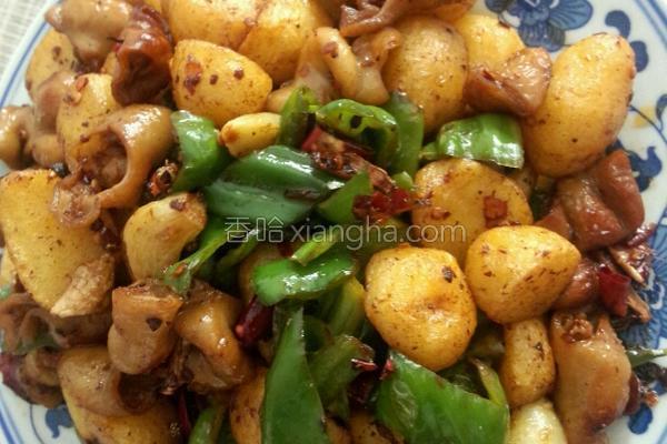 土豆烧肥肠的做法