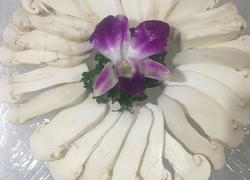 刺生松茸菌