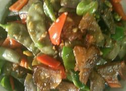乡村土扁豆