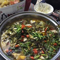 飘香酸菜鱼
