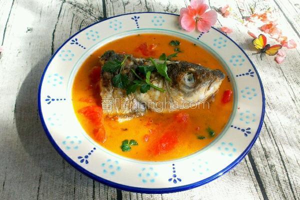 番茄鱼头汤的做法