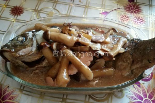 红酒蘑菇炖鲤鱼