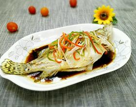 清蒸桂鱼[图]