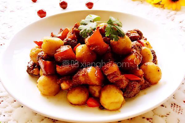 土豆炖肉的做法