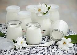 自制醇香酸奶