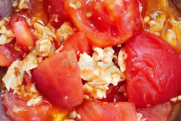 朝霞红(番茄炒蛋)
