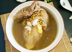 乳鸽百合炖绿豆汤
