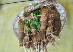 红烧香辣皮皮虾