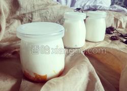 自制儿童酸奶