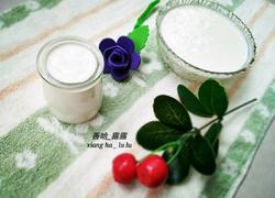 自制老酸奶