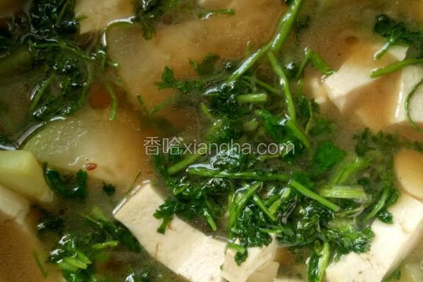 浦瓜豆腐汤