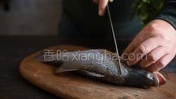 酸菜鲈鱼的做法图解3