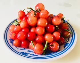 吃樱桃[图]