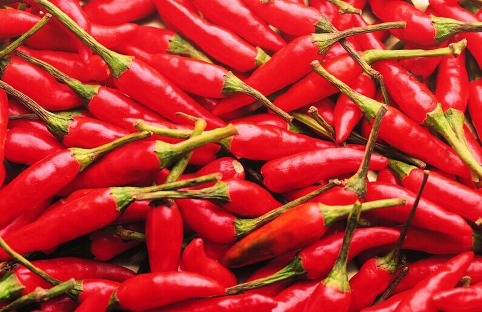 开来红辣椒